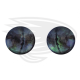 grey frog eye