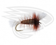 CHOCOLATE-White Tail-Brown Hackle