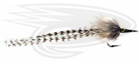 Tarpon-Cockroach