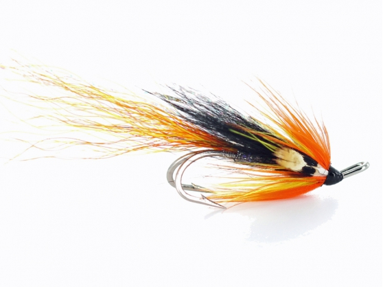 Ally's Cascade Shrimp JC